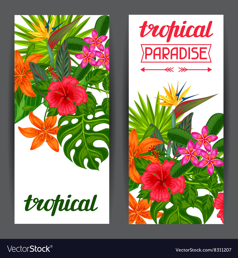 Banners with stylized tropical plants leaves and