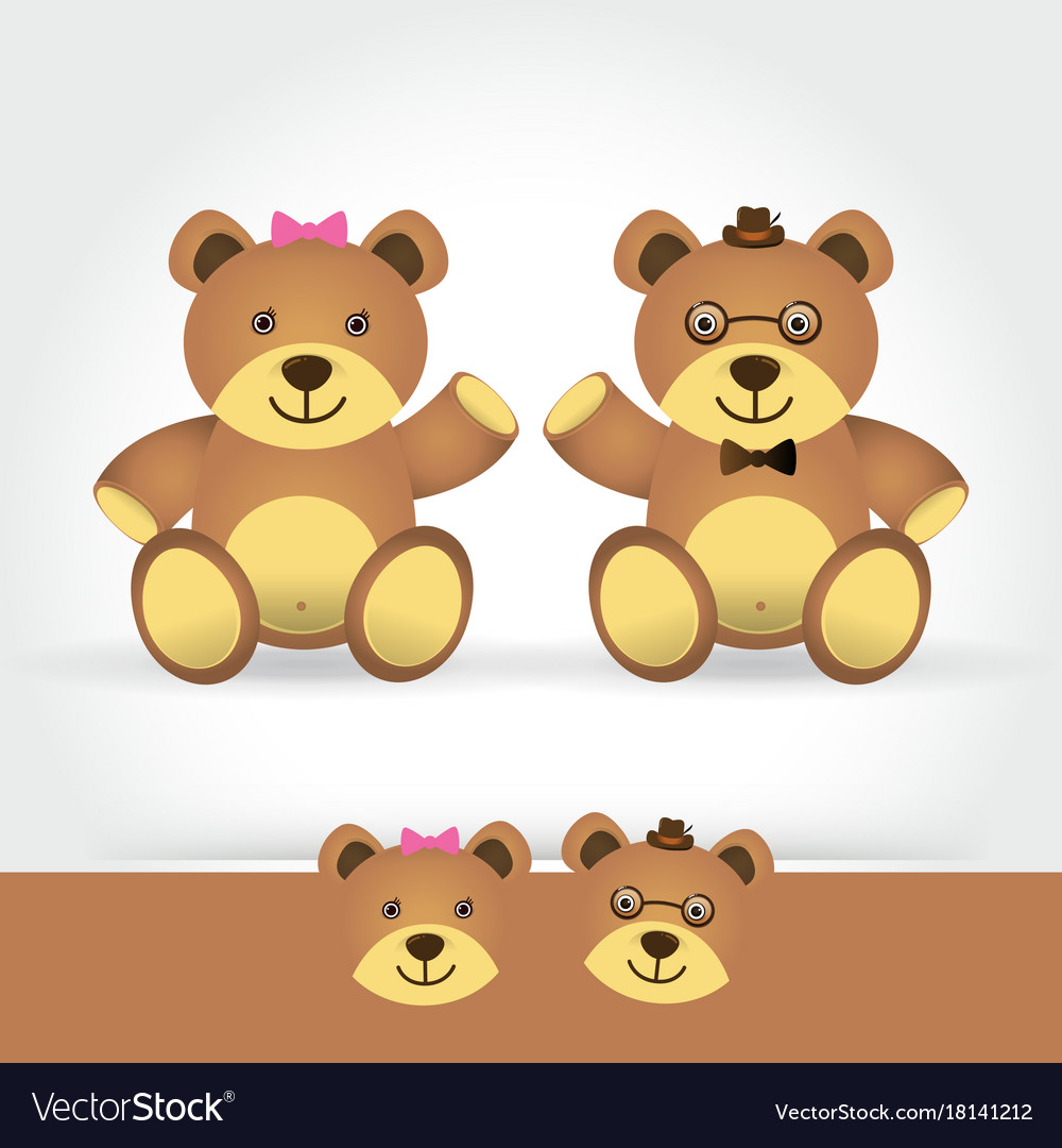 Couple teddy bear on white background