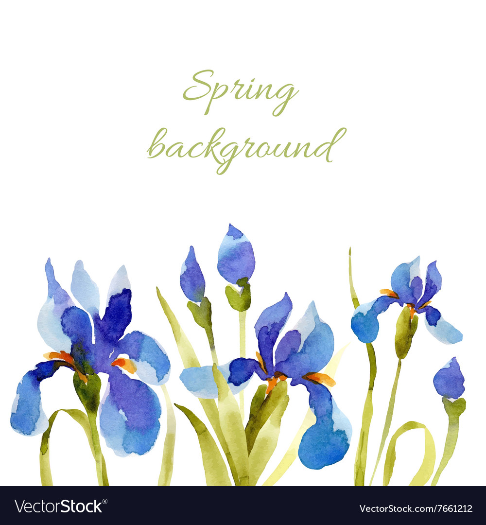 Spring background watercolor lowers