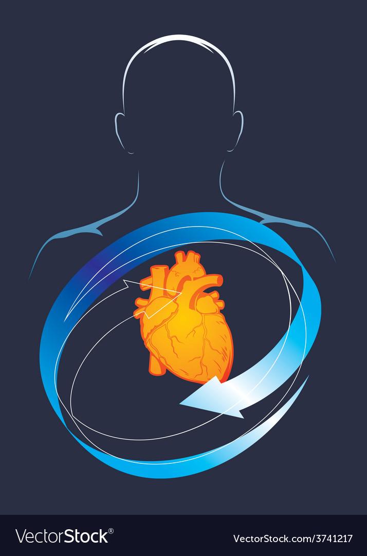 Health of their hart