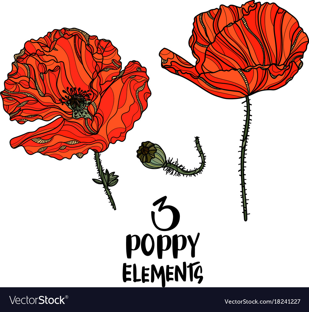 Poppy flowers design elements