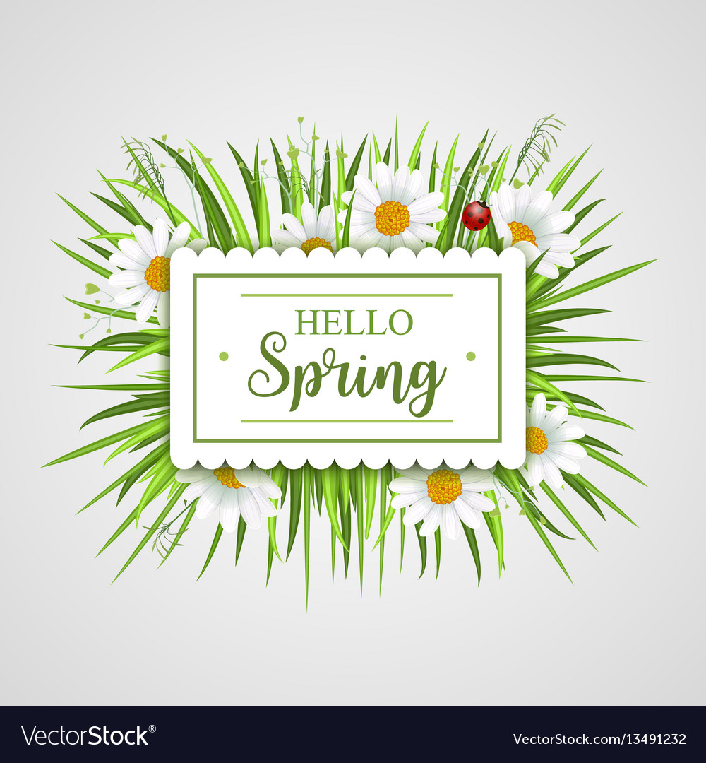 Hello spring banner with grass frame