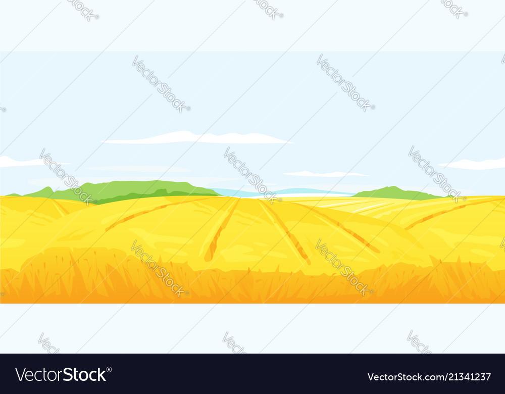 Wheat field landscape background