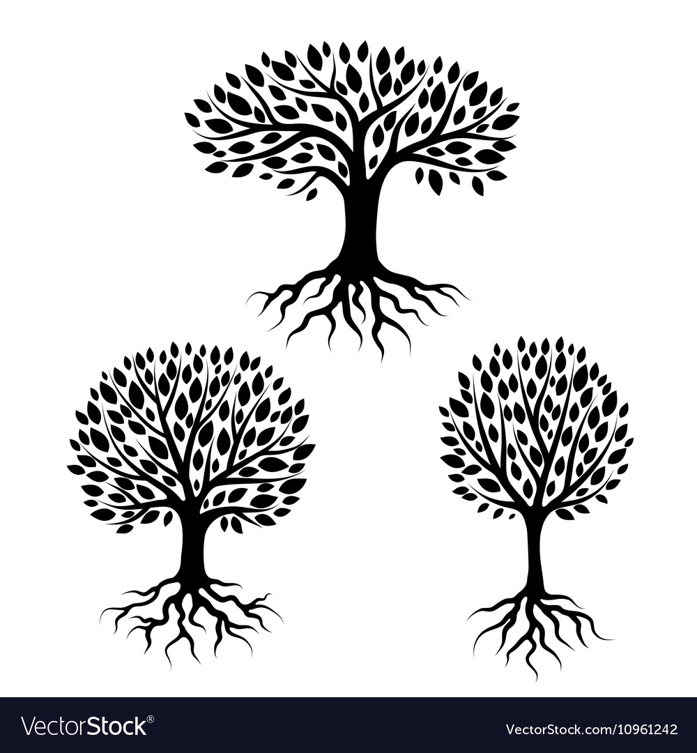 Set of abstract stylized trees with roots