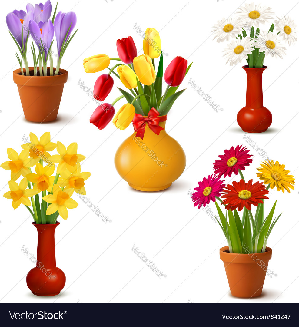 Spring and summer colorful flowers in vases vector image