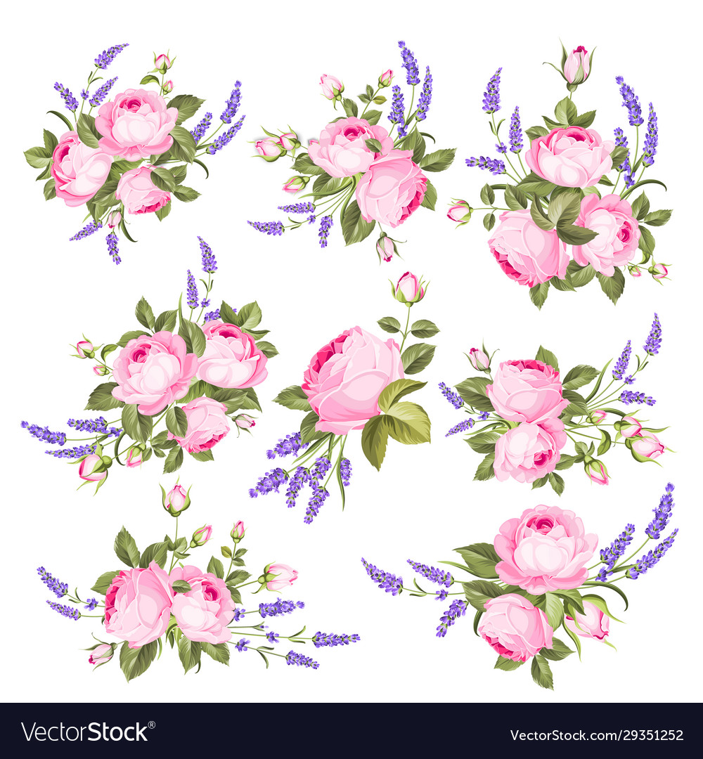 Set blooming flowers for your design