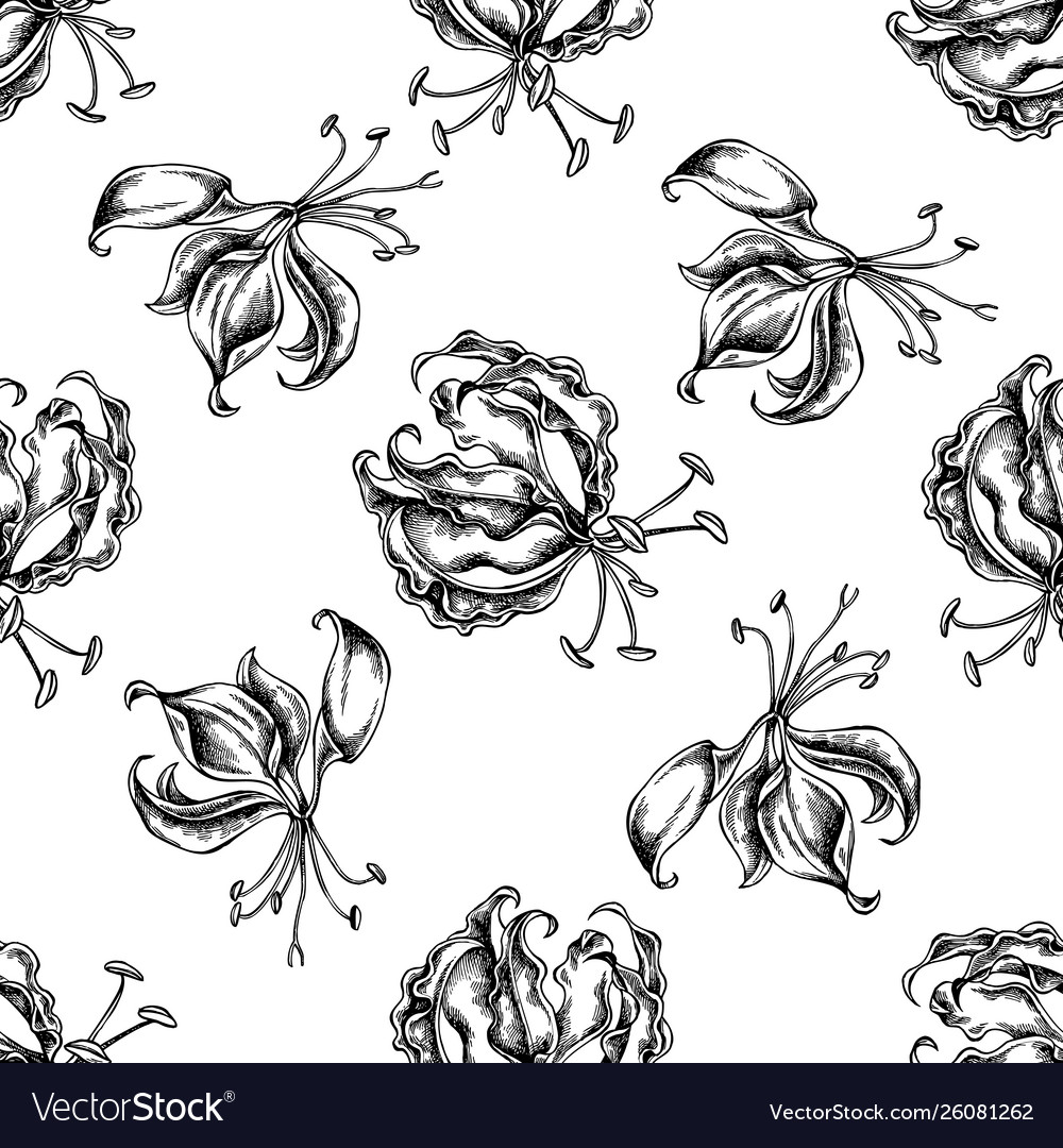 Seamless pattern with black and white gloriosa