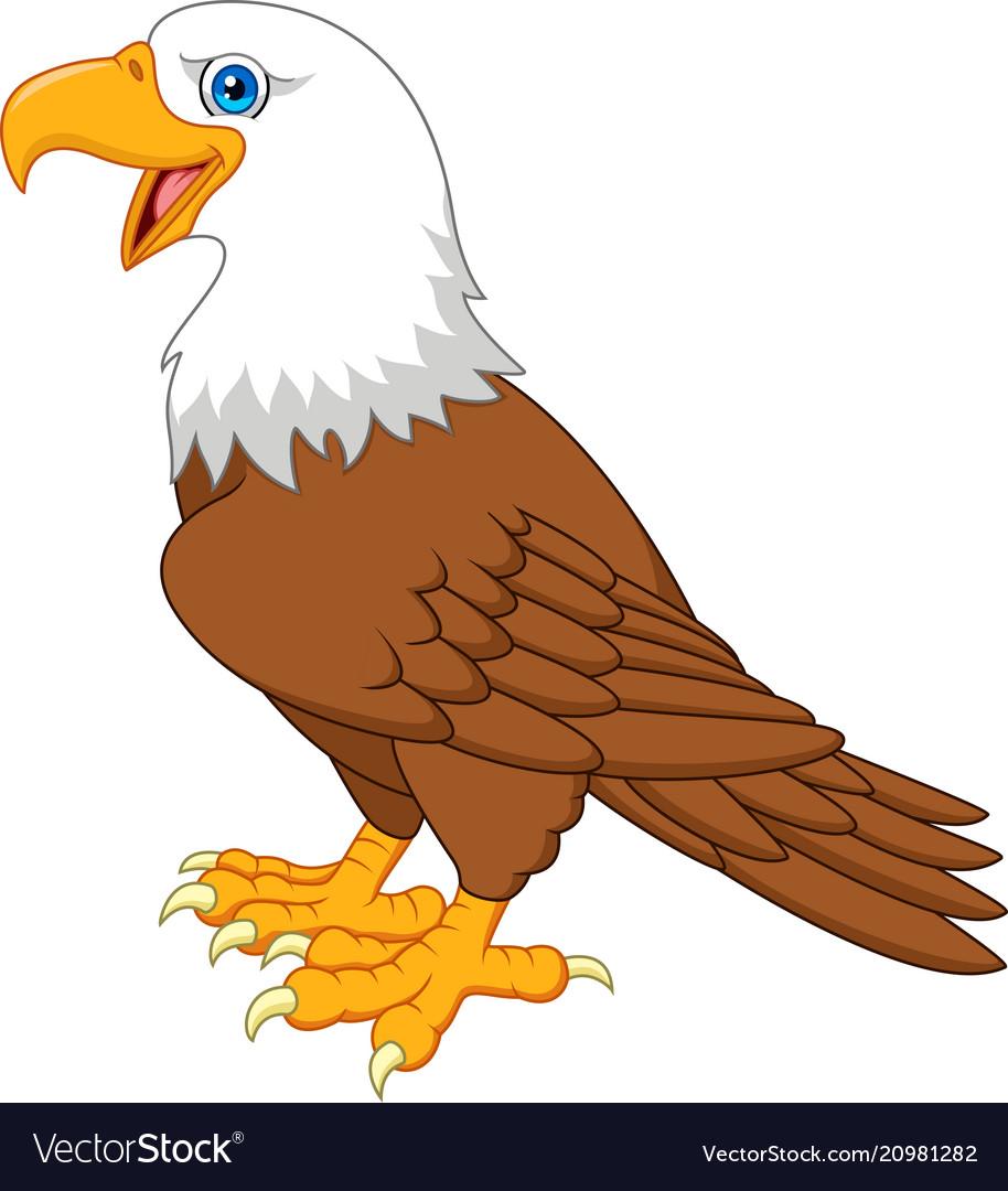cartoon bald eagle royalty free vector image - vectorstock  vectorstock