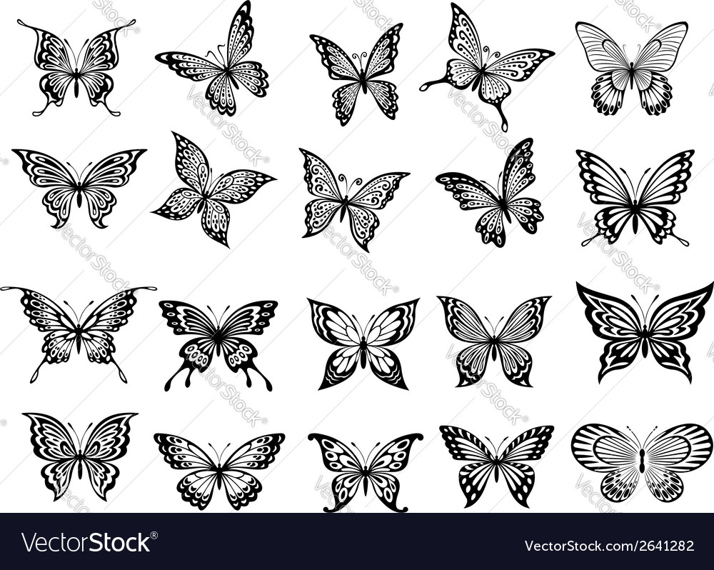 Set of twenty butterflies