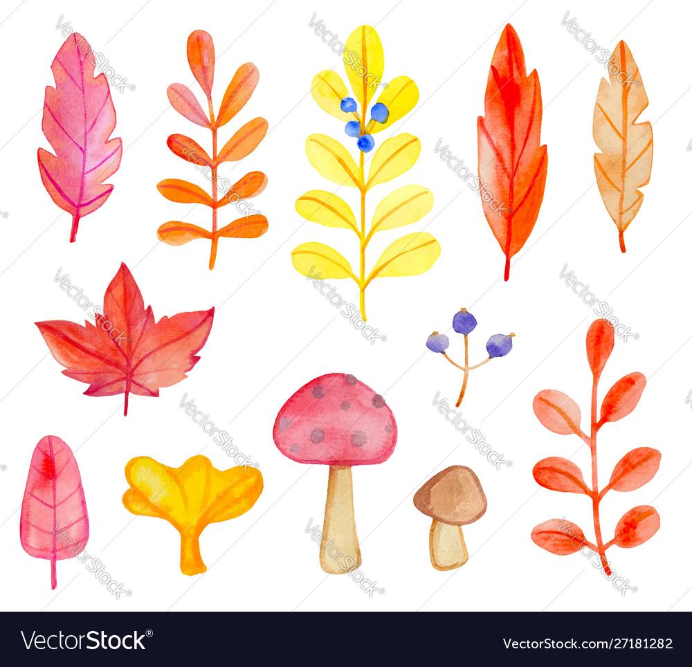Set watercolor leaves and mushrooms