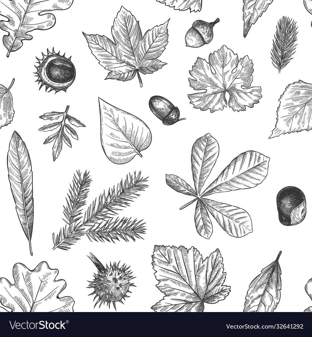 Autumn leaves seamless pattern hand drawn fallen