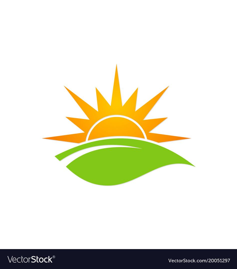 Green leaf sun shine organic logo Royalty Free Vector Image