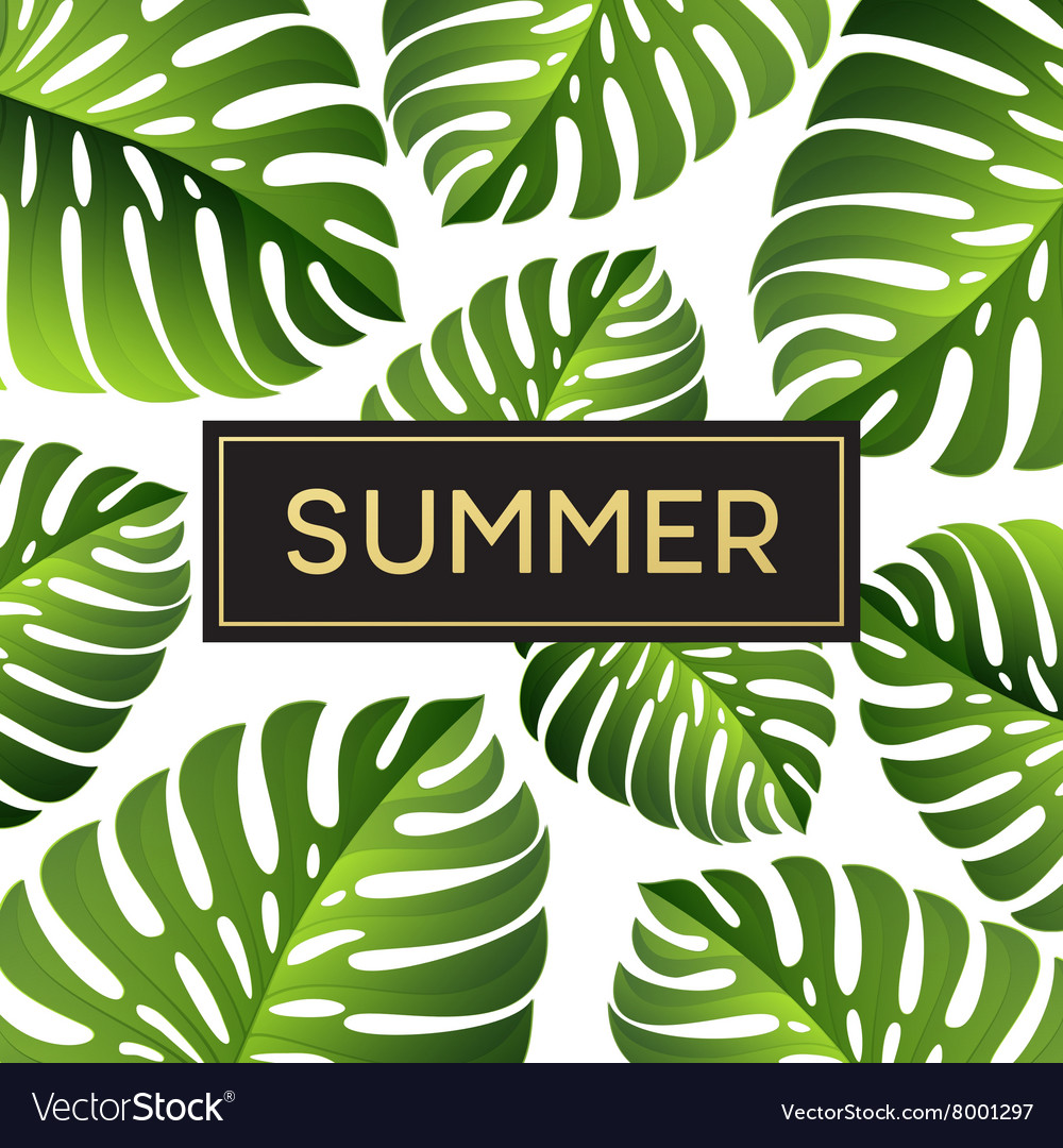 Tropical monstera leaves design for text card
