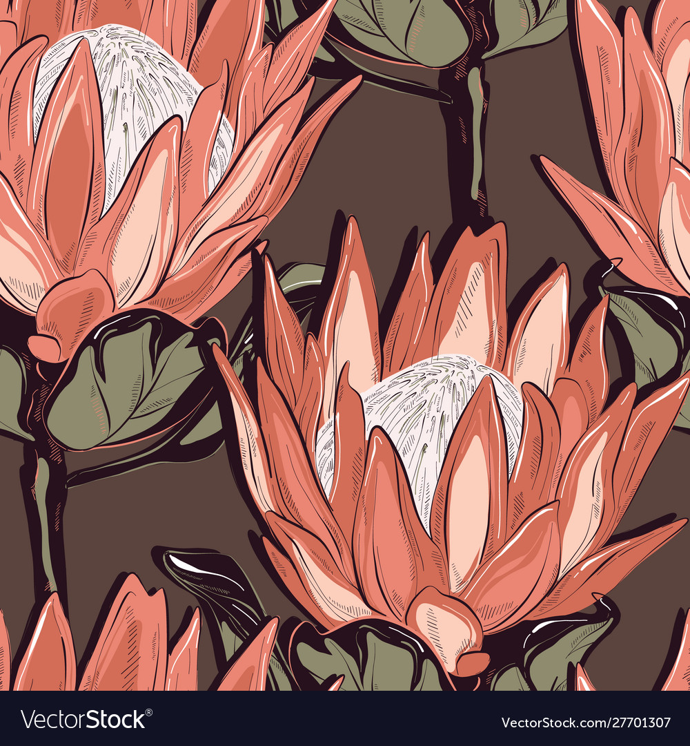 Protea seamless pattern design hand-drawn flower
