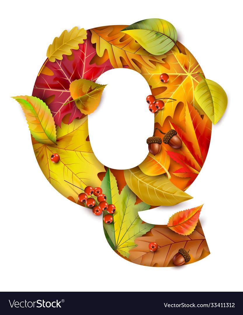 Autumn stylized alphabet with foliage letter q
