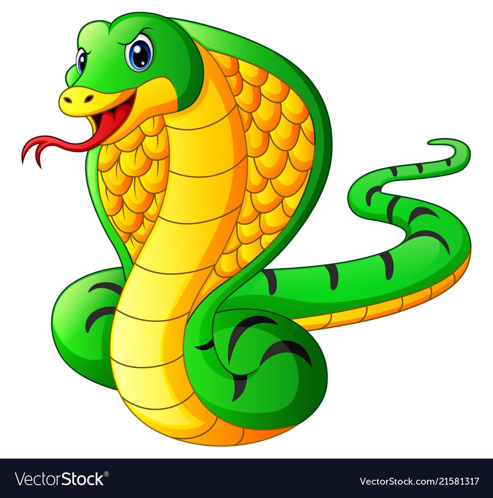 Cobra snake cartoon Royalty Free Vector Image - VectorStock