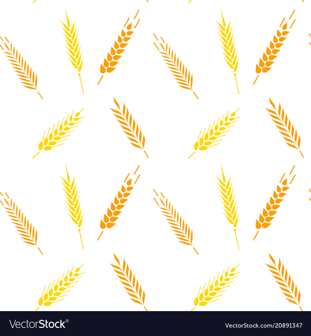 Whole grain natural organic background for