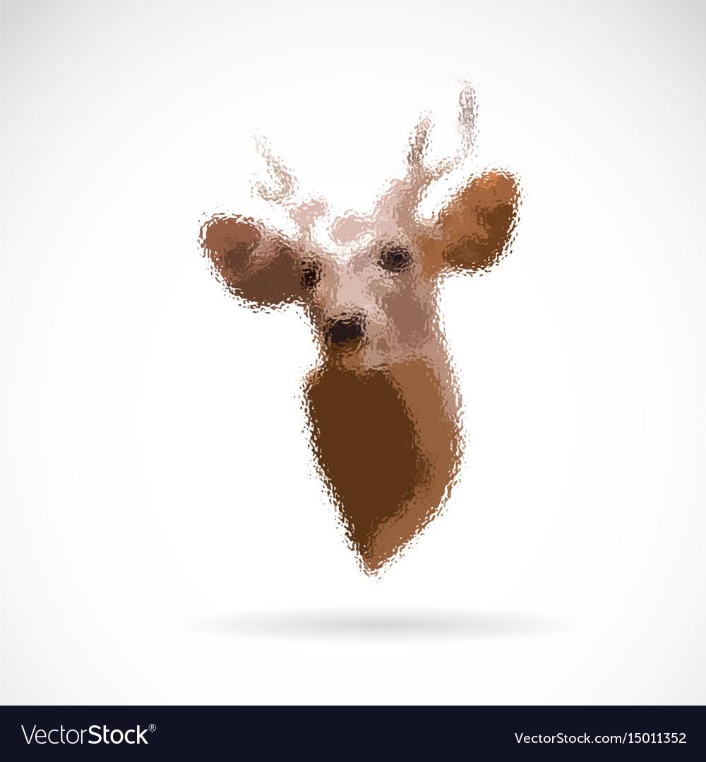 Deer head on white background wild animals