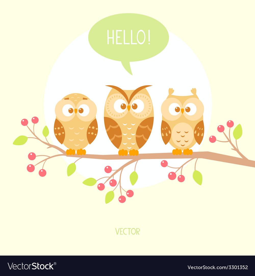 Owls three