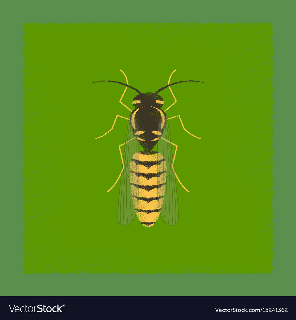 wasp icon in flat style isolated on white