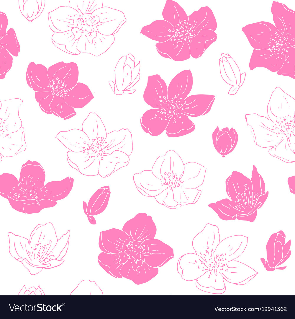 Seamless pattern with jasmine flowers royalty free vector seamless pattern with jasmine flowers vector image izmirmasajfo