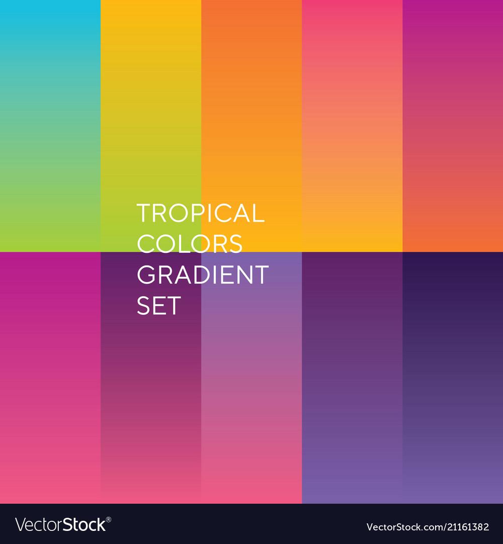 Exotic sunset colors palette