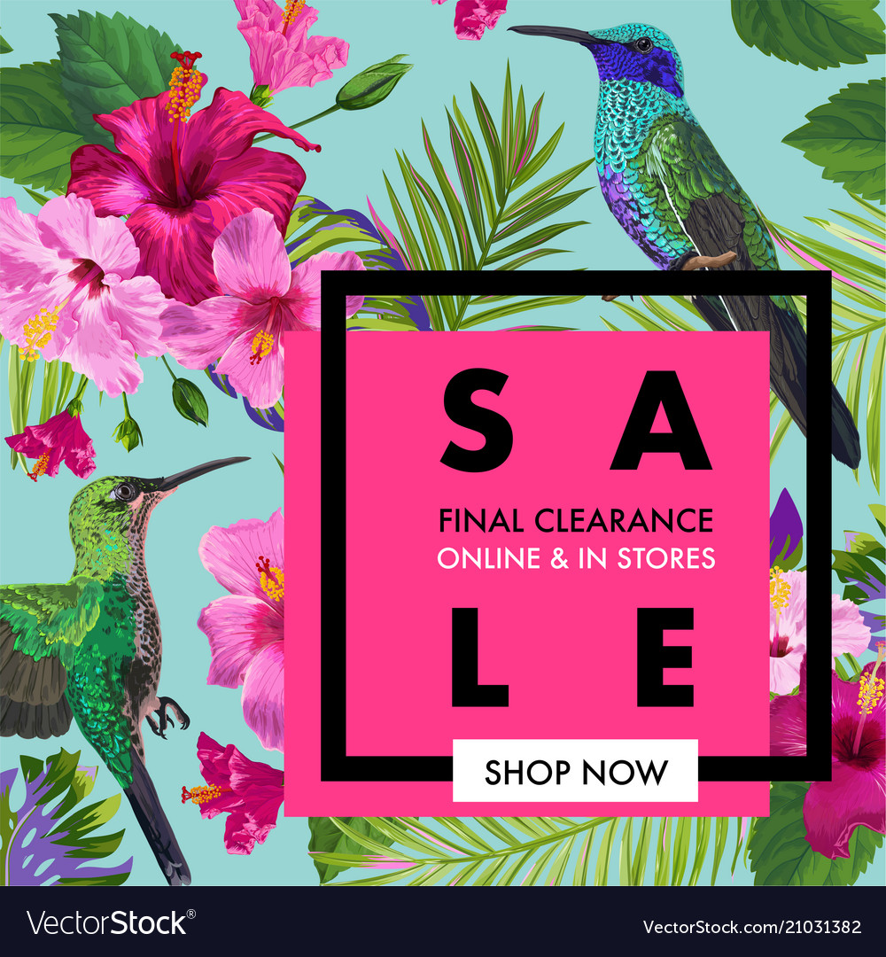 Summer sale banner with tropical flowers and birds summer sale banner with tropical flowers and birds vector image izmirmasajfo