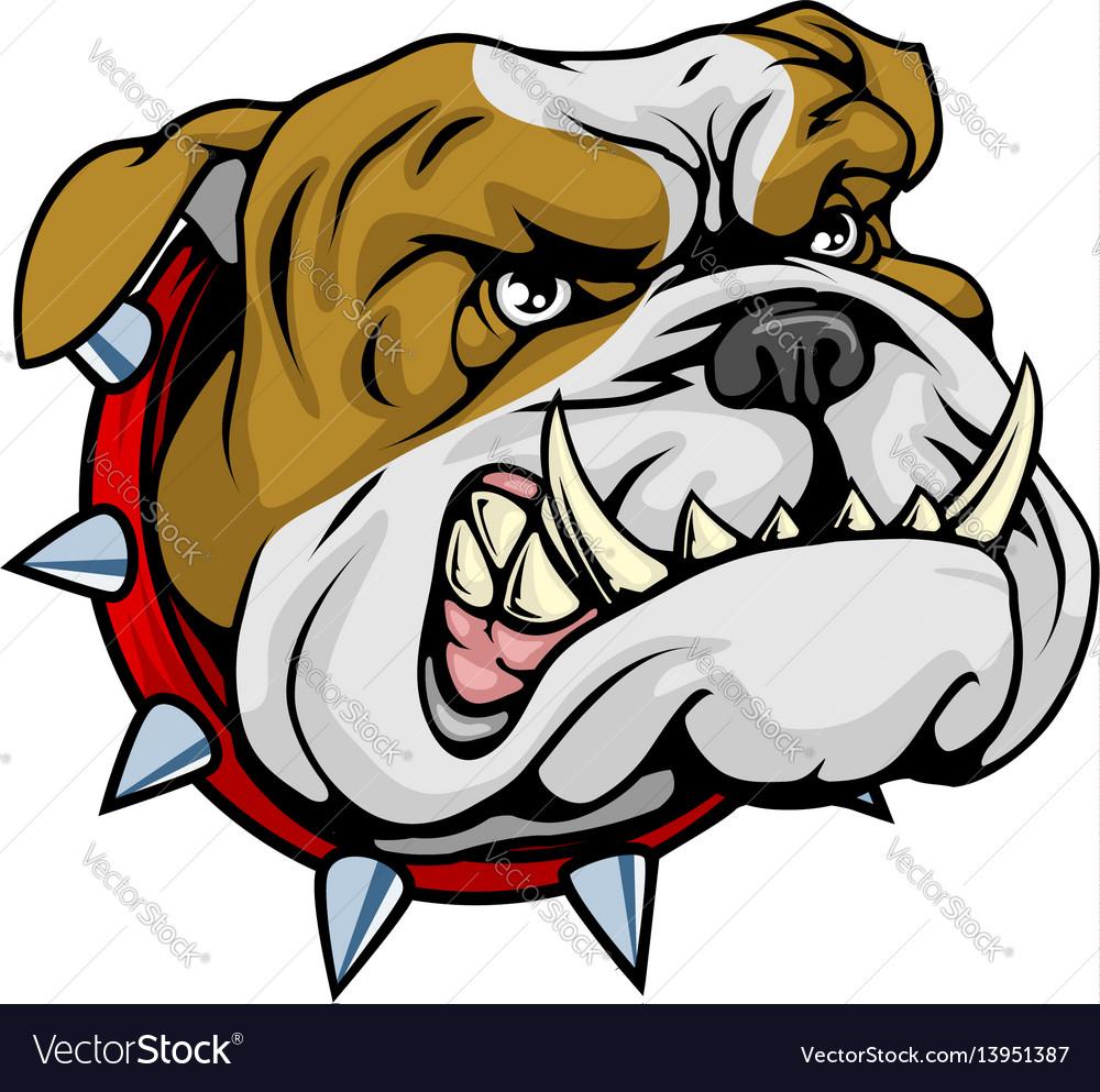 Mean bulldog mascot vector image