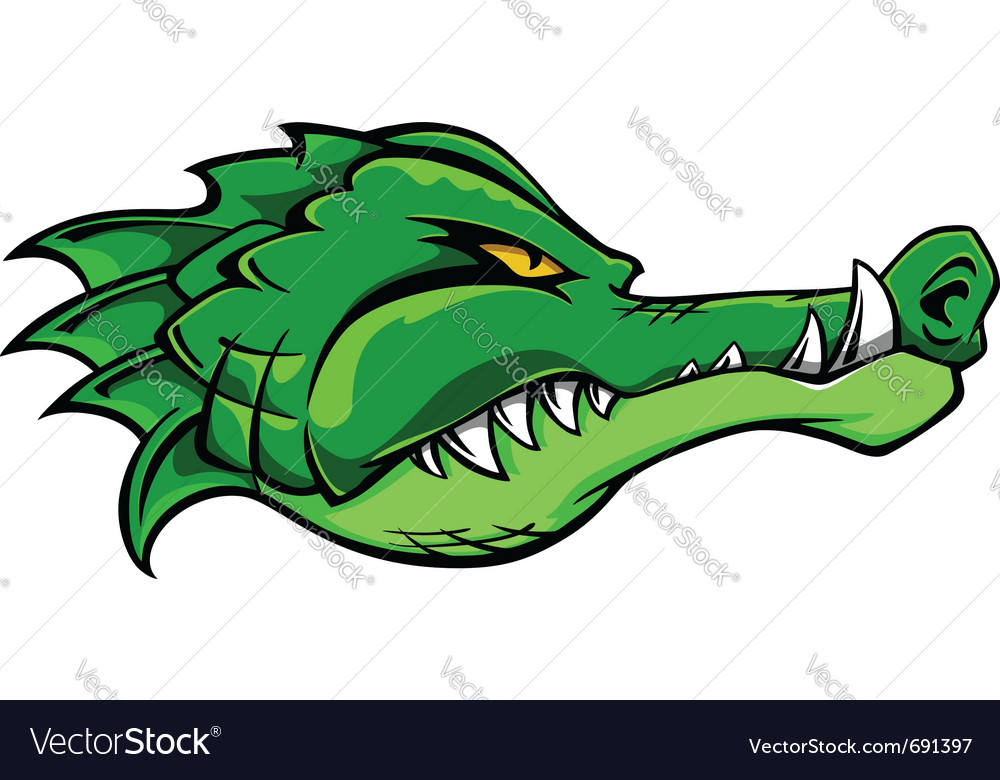 Alligator crocodile vector image