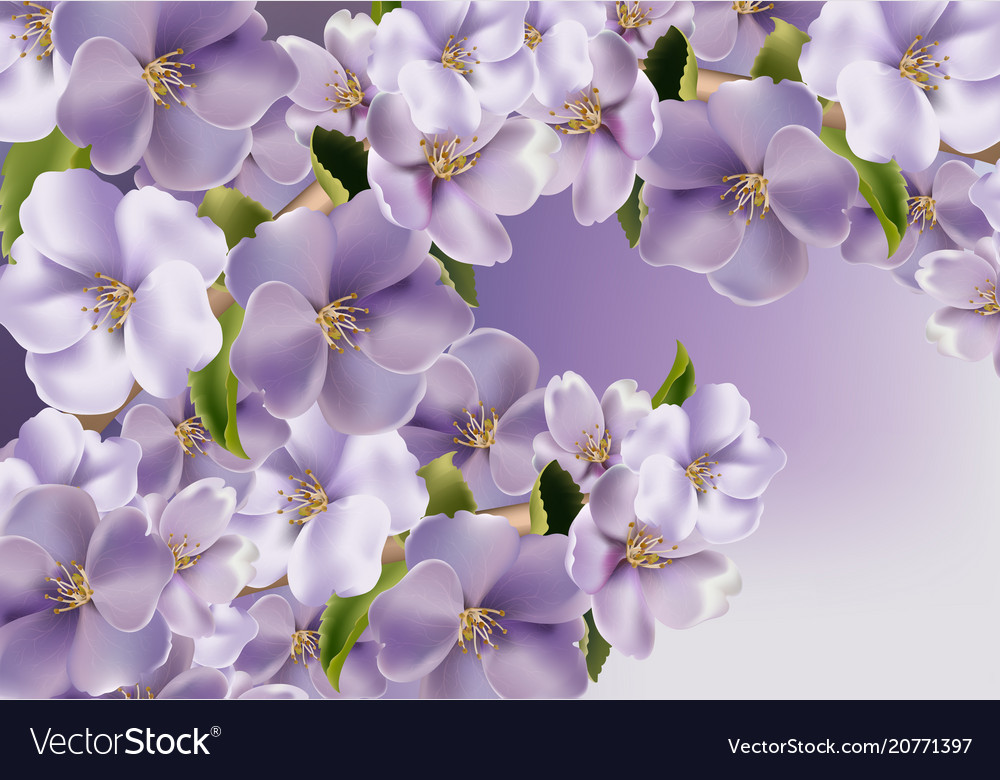 Violet flowers background realistic spring
