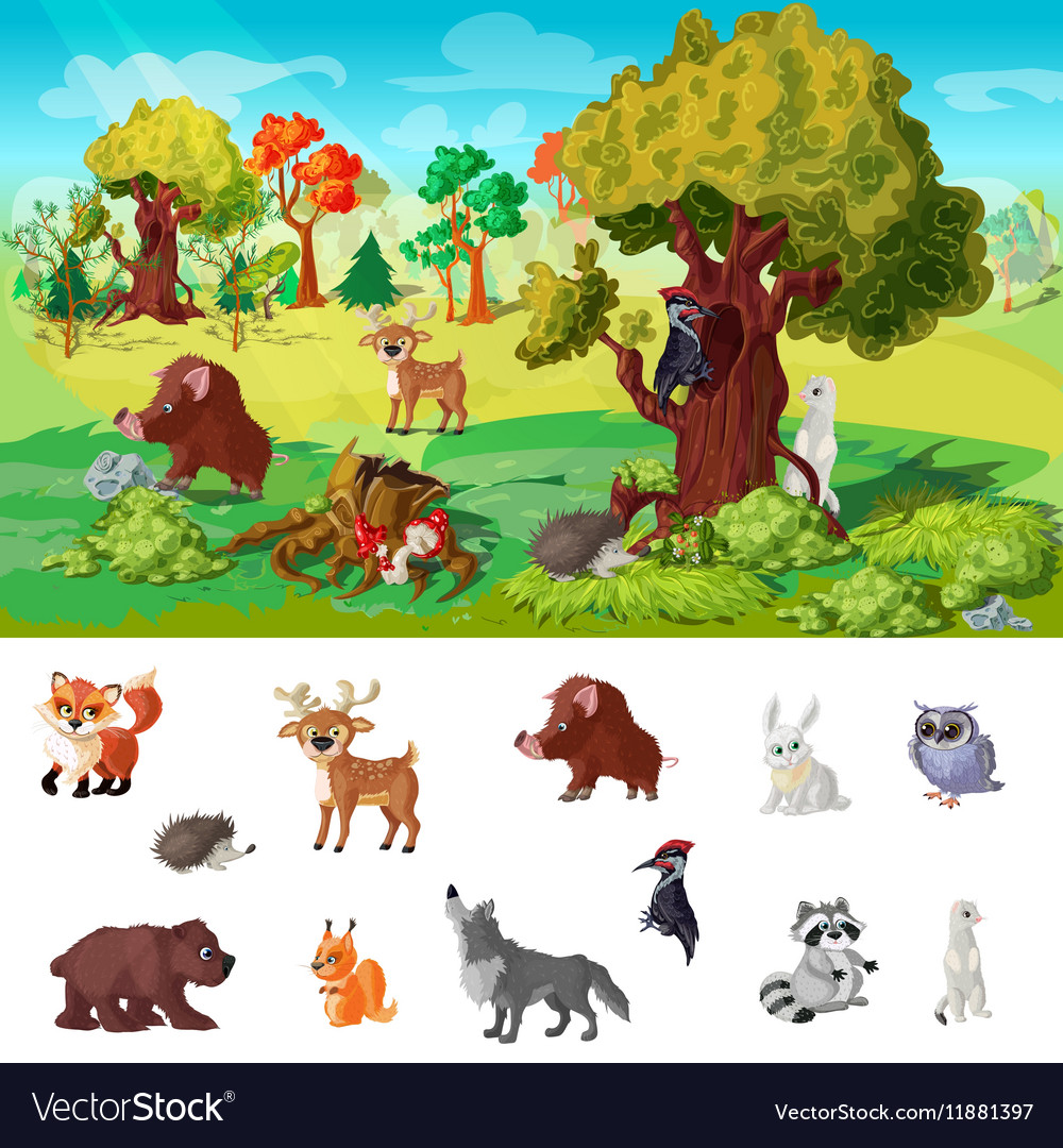 Woodland Animals Concept vector image