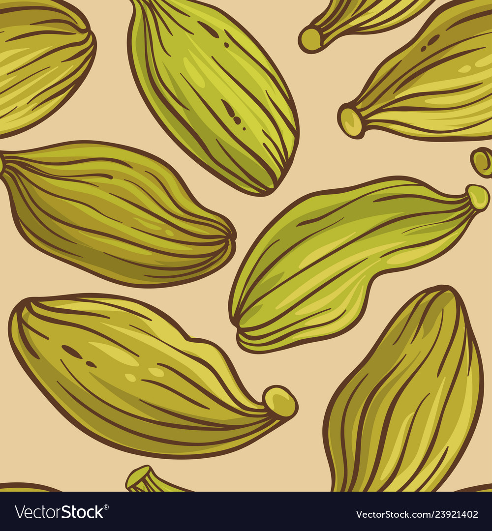 Cardamom seeds pattern on color background