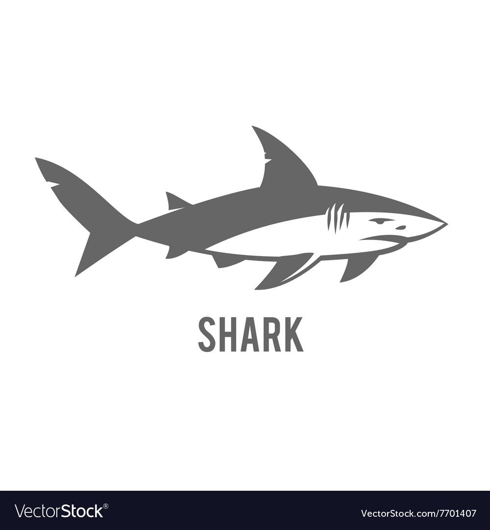 Monochrome of stylized shark isolated