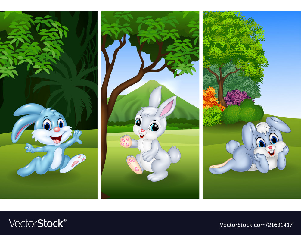 Set of funny rabbits with nature background