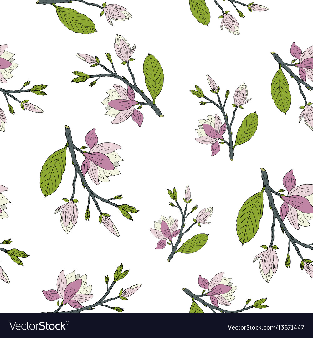 Hand drawm magnolia seamless pattern vector