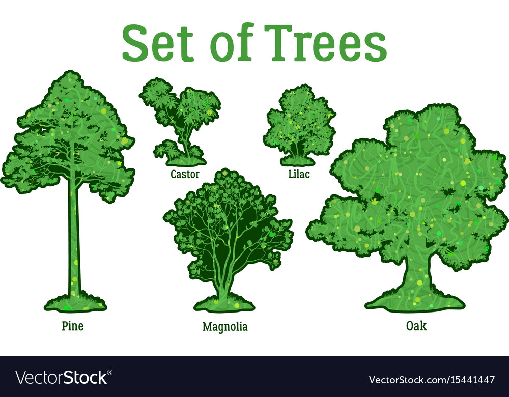 Set plants trees and bushes