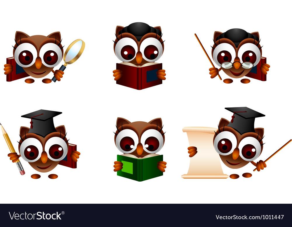 Various of cute owl