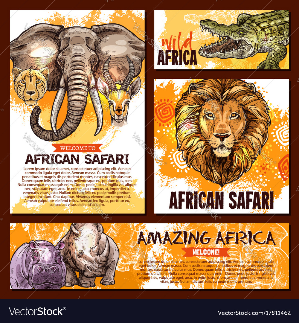 zoo sketch poster wild african animal royalty free vector