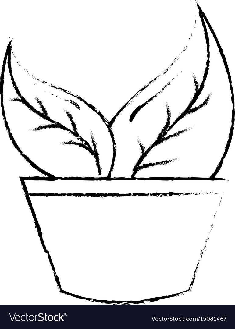 Pot with leafs plant ecology icon vector image