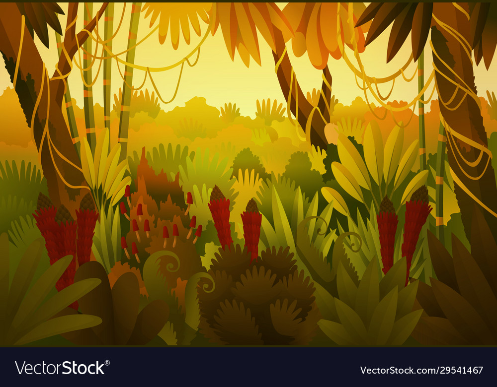 Tropical jungle dark background forest