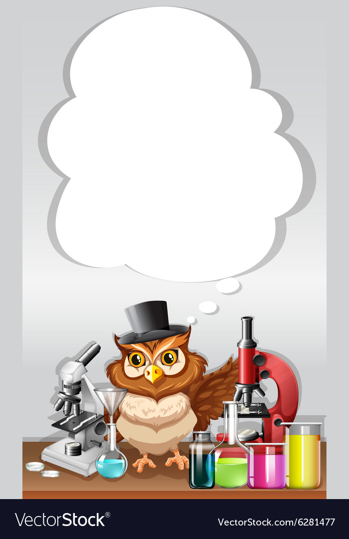 Border design with owl in chemistry lab vector image