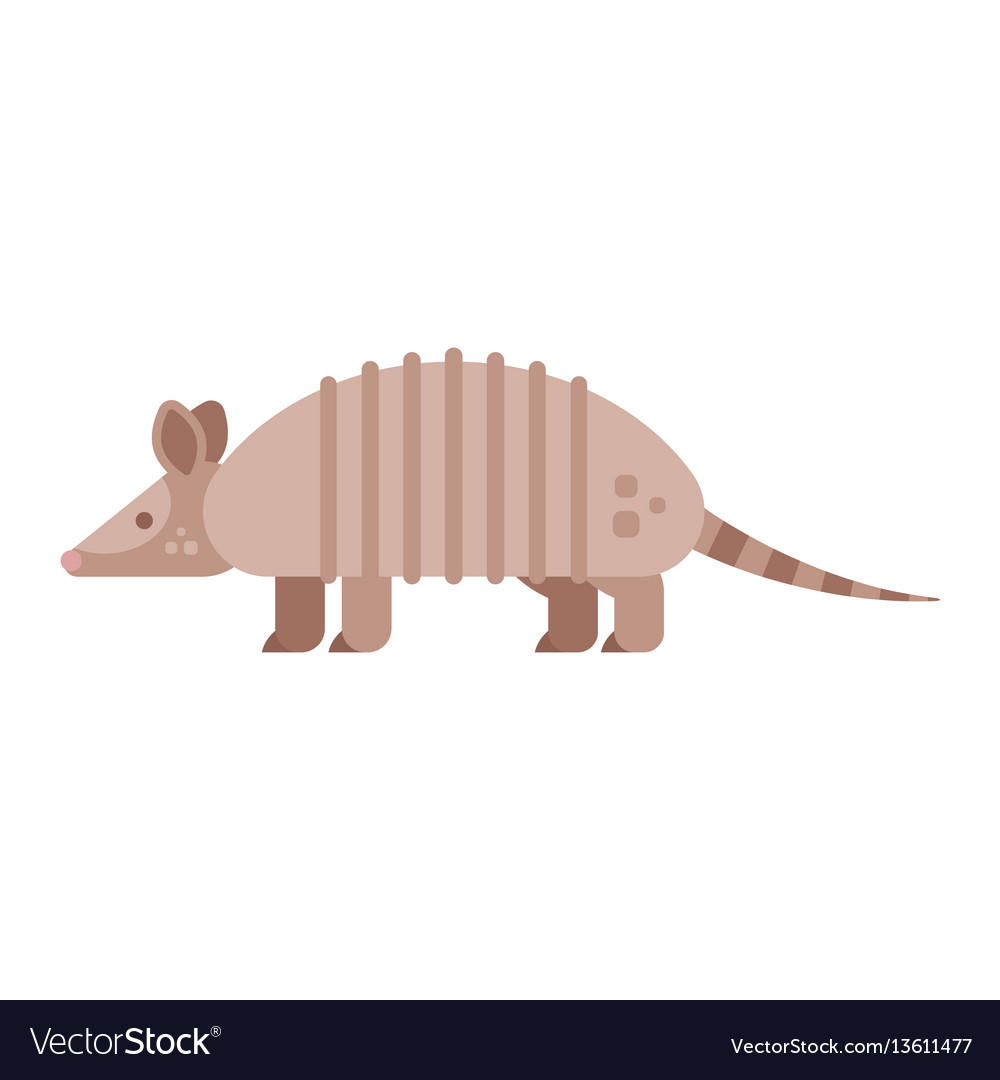 Flat style of armadillo vector image
