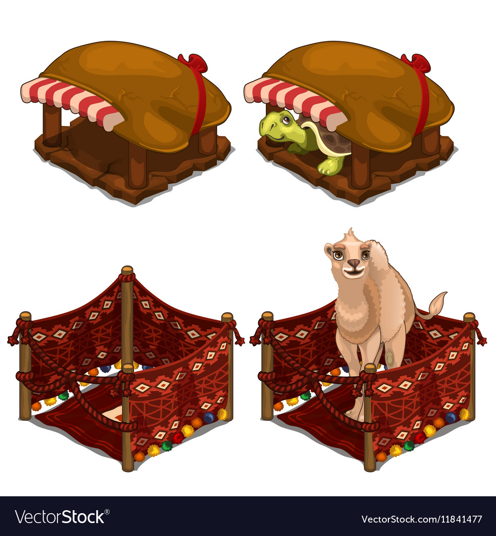 Turtle and camel in cozy house for animals