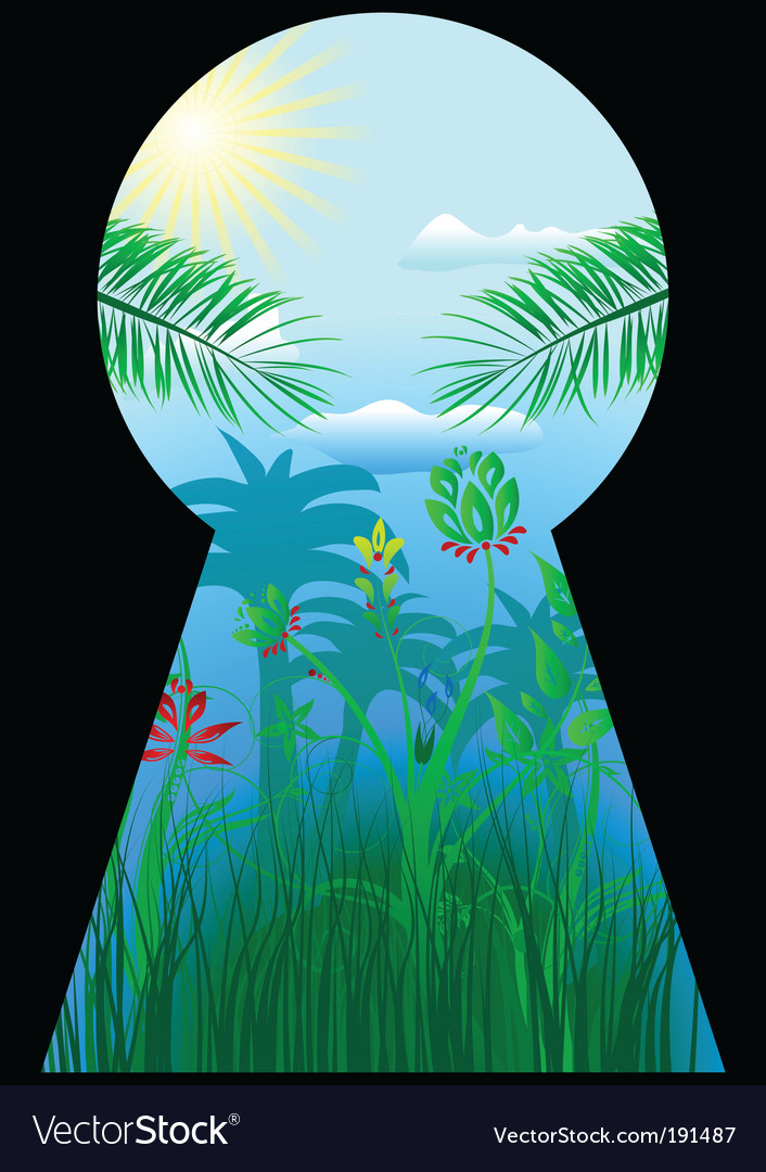 Keyhole in the tropical world vector image