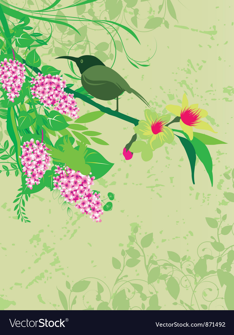 Abstract Spring Floral Background Vector Image On Vectorstock