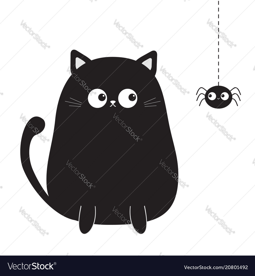 Black cute sitting cat kitten looking on hanging