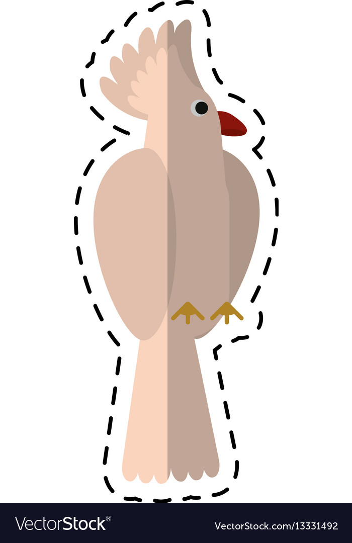 Cartoon cockatoo bird tropical icon