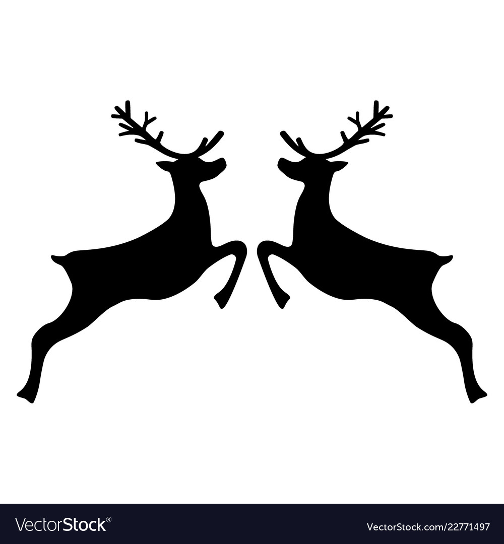 Reindeer jumping on a white background