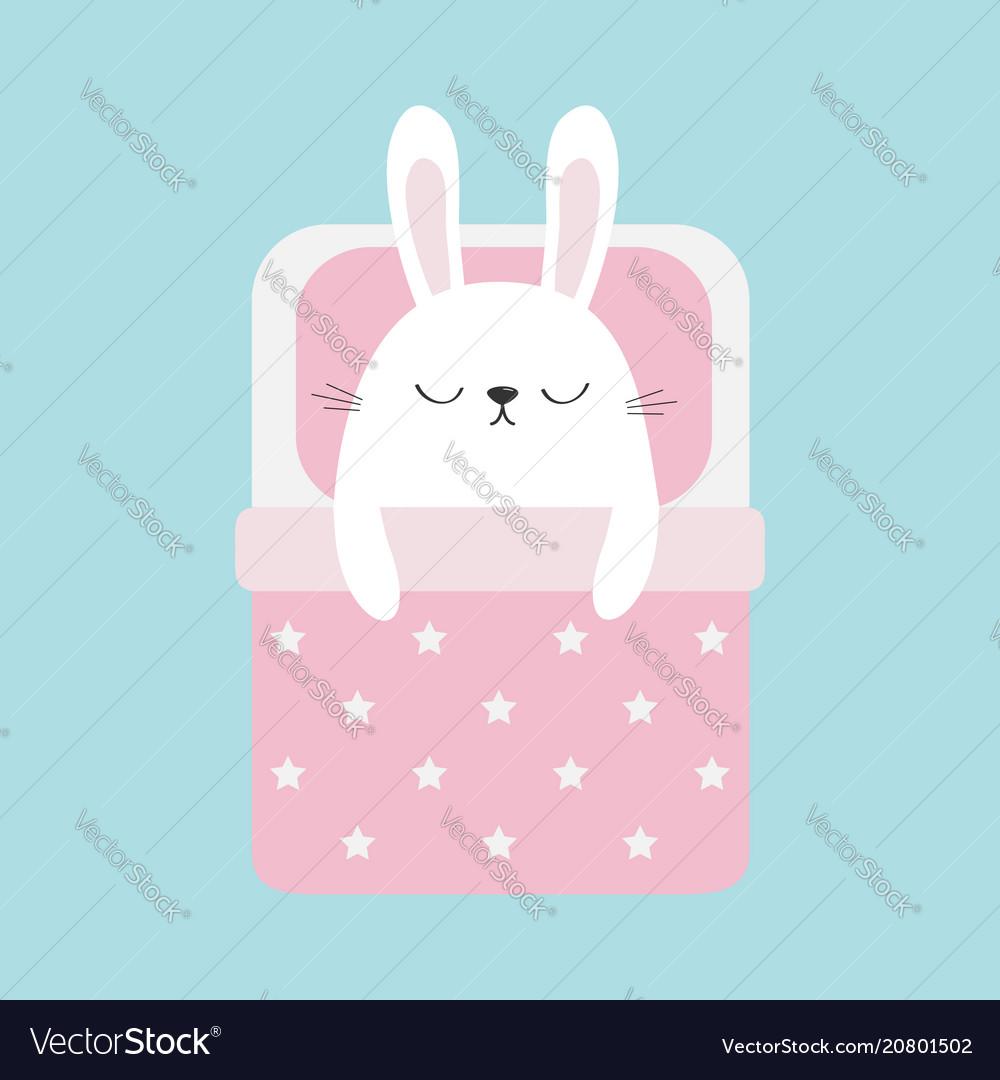 Sleeping rabbit bunny baby pet animal collection