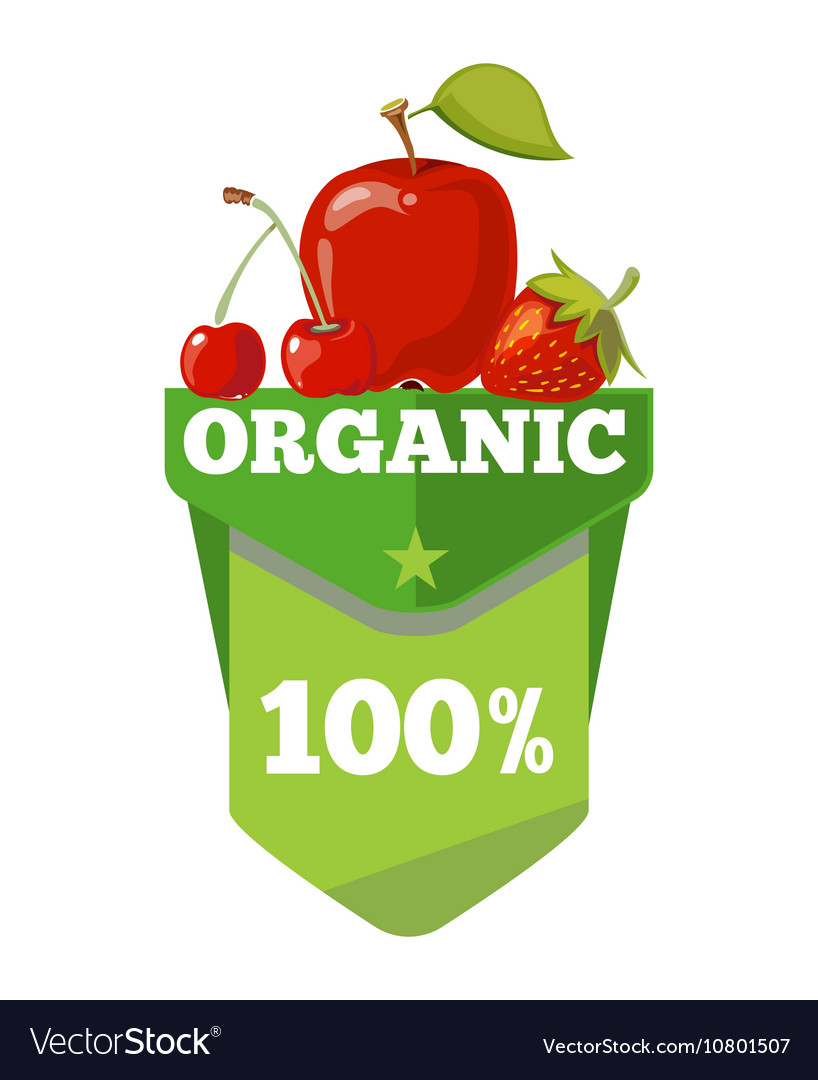 Natural organic fruits logo label badge template